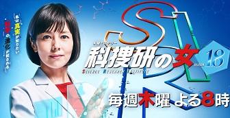 科捜研の女19/春ドラマ2019